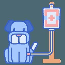 Cirurgia general
